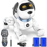 Ok K! okk Fernbedienung Hunderoboter, Neu Ferngesteuerter Hund mit Singen, Tanzen, Sprechen, intelligenten Früherziehung Spielzeug für 3-12 Jahre Jungen Mädchen Geburtstag