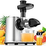 Slow Juicer Entsafter Gemüse und Obst mit 2 Geschwindigkeit & Umkehrfunktion & Saftkanne & Reinigungsbürste (MEHRWEG)