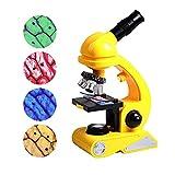 WYYUE Pädagogisch Mikroskop für Kinder Anfänger Jugendliche, 100X - 1200X Wissenschaftliches Mikroskop, Durchlicht LED-Beleuchtung, Weitwinkelobjektiv, Mikroskopsspielzeug mit Zubehör