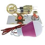 Sharplace Mini Stirling Motor Modell mit Faner Rotierende & LED Lampe, Heißluftdampfbetriebene Spielzeug Physik Experiment Sportwissenschaft DIY Kits