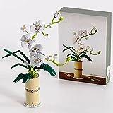 Intee Blumensträuße Pflanzen Bausteine, 588+Pcs Phalaenopsis Ornamente Modellblöcke Kompatibel mit Lego 10280