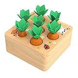 NIWWIN Pädagogische Karotten Ernte Holz Kleinkinder Spielzeug Sortierspiel, Entwicklung Montessori Spielzeug Vorschule Lernen Feinmotorik Jungen Mädchen Spielzeug (FBM-Carrot-A)