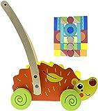RB&G Laufwagen + Bauklötzer Konstruktionsspielzeug - für Babys und Kinder, spielerisch Laufen, Motorik Spielzeug ab 1 Jahr Lauflernwagen