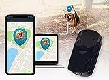 Salind GPS PET Tracker GPS Tracker für Hunde Wasserdicht mit Live-Tracking etwa 2 Tage Akkulaufzeit (bis zu 3 Tage im Standby Modus)