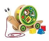 Hape Schnecke Ziehspielzeug |Preisgekrönt Kleinkind Schiebe- und Ziehspielzeug aus Holz mit abnehmbarem Schneckenhaus und buntem Formensortierer, lustiges Lernspielzeug für Kinder