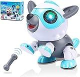 Felly Roboter Hund für Kinder, Intelligentes Roboter Hundespielzeug Spielzeug ab 3 4 5 6 7 8 Jahre Kinder Jungen Mädchen, Berührungsgesteuert Robo mit Licht und Ton