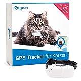 Tractive GPS Tracker für Katzen (2021) mit Halsband. 24/7 GPS-Ortung & 365 Tage Positionsverlauf. Folgen Sie Ihrer Katze überallhin.