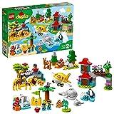 LEGO 10907 DUPLO Tiere der Welt, Lernspielzeug für Kleinkinder im Alter von 2 - 5 Jahren, inkl. Flugzeug und 15 Tierfiguren