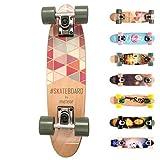 meteor Holz Skateboard Kinder - Mini Cruiser Kickboard - Skateboard mädchen Rungen Kinder ab 3 Jahre (Summer Triangles)