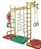 NiroSport FitTop M3 Indoor Klettergerüst für Kinder Sprossenwand für Kinderzimmer Turnwand Kletterwand, TÜV geprüft, kinderleichte Montage, Made in Germany (Blau, Raumhöhe 240-290 cm)