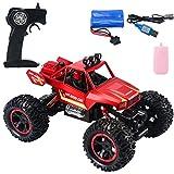 Nebel-Stunt Drift RC Car High Speed Racer Fernbedienung Auto für Kinder & Erwachsene, Hobby RC Auto Stunt Auto mit LED-Leuchten 2,4 GHz Schnell wiederaufladbare Spielzeugautos, Hecknebel Nebel