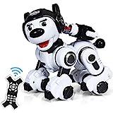 RELAX4LIFE Ferngesteuerter Roboter Hund, intelligentes Roboterhund mit Zielschießplattform, Programmierbarer Roboter Welpen, Singen & tanzen & blinken, Hundespielzeug Kinder, RC Interaktiv (Schwarz)