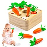 Comius Sharp Karotte Montage Spielzeug Holzspielzeug Montessori, Pädagogisches Spielzeug Holz Sortierspiel Holz für Kinder, Sorting Puzzle Karotten für Kinder als Geburtztag Geschenk