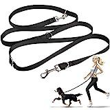 oneisall Hundeleine Nylon, 2.5m | für kleine & große Hunde, 3fach verstellbar, Robuste Doppel-Leine | Schlepp-Leine | Führ-Leine Trainingsleine Handschlaufe und D-Karabiner