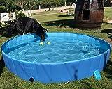 pecute Hundepool Schwimmbad Für Hunde und Katzen Swimmingpool Hund Planschbecken Hundebadewanne Faltbarer Pool Für Kinder Den Hund Katze Geschenk - Haustier Badebürste L (160 * 30cm)