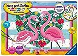 Ravensburger Malen nach Zahlen 28782 - Liebenswerte Flamingos - für Kinder ab 7 Jahren