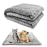 Pet Blankets Hundedecke, Liegedecke für Katzen und Hunde, Weiche Fleecedecke waschbare Hundedecke,für Katzen Kaninchen und alle Haustiere Welpen Weiche Warme Matte Grau(100*120)