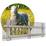 CAIJUN-Türschutzgitter Hühnerdrahtgeflecht, Geflügelzaun Gartennetze für Draussen Huhn Schutz, Gemüse Früchte Landwirtschaftliches Gehege, Schneidbar (Color : Black, Size : 1mx50m)