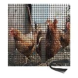 CAIJUN-Türschutzgitter Hühnerzuchtnetz, Draussen Garten Kunststoffgitter Flexibler Zaun für Landwirtschaft Gemüse Früchte, Schneidbar Gehäusebarriere (Color : Black, Size : 1mx50m)