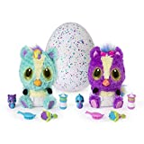 Hatchimals 6044070 HatchiBabies Ponette, Baby - Hatchimal mit interaktiven Accessoires