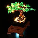 LODIY Beleuchtung Licht Set für Lego Bonsai Baum , Beleuchtung für Lego 10281 Bonsai Baum (NUR Licht, Nicht Enthalten Lego Modell) (Classic Version)