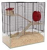 PETGARD Mäuse- und Hamsterkäfig, großes Nagarium mit Glaswanne und 2 Holzetagen, Komplettset mit Laufrad und weiterem Zubehör, 67x36,5x70 cm, Oregon