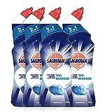 Sagrotan WC-Reiniger Ozeanfrische – 2in1 Reinigungsmittel mit Antischmutzfilm für langanhaltende WC-Frische – 4 x 750 ml