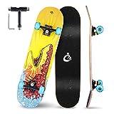 Vikaster Skateboard Komplette Cruiser Skateboard für Kinder Jugendliche Erwachsene, 7-Lagiger Kanadischer Ahorn Double Kick Deck Concave mit All-in-one Skate T-Tool für Anfänger
