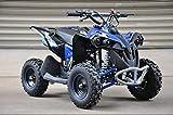 Renegade MBO 50cc Benzin Mini Quad 2021 Modell Kinder Quad (blau)