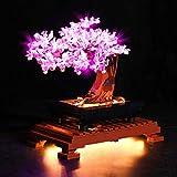 RcBrick Upgrade LED Beleuchtung für Lego 10281 Bonsai-Baum, Beleuchtung Licht Set für Lego Bonsai Tree 10281 (Nicht Enthalten Lego Modell)