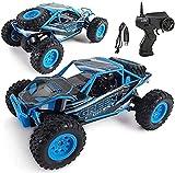 s-idee® SM2403 1:24 Elektronischer 4WD Wüstentruck mit 2,4 GHz RC Truck Monstertruck ferngesteuertes Auto