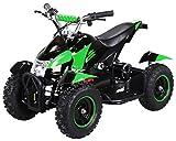 Actionbikes Motors Mini Kinder Elektro Quad ATV Cobra 800 Watt 36 V Pocket Quad - Original Saftey Touch - Kinder E Bike (Schwarz/Grün)