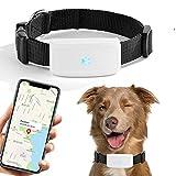 GPS-Tracker für Hunde und Katzen, GPS-Tracker, Echtzeit-Ortung für historische Geräte, wasserdicht, kostenlose App