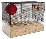 PETGARD Mäuse- und Hamsterkäfig, Nagarium mit Glaswanne und 2 Holzetagen, Komplettset mit Laufrad und weiterem Zubehör, 67x36,5x52 cm, Minnesota