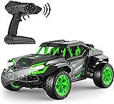 Gizmovine Ferngesteuertes Auto,Schnelle Geschwindigkeit 25 km / h All Terrains Elektrospielzeug Off Road RC Auto, Monster Vehicle Truck Crawler für Jungen, Kinder und Erwachsene