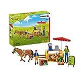SCHLEICH 42528 Farm World, Mehrfarbig,34.01 x23.01x11.98cm(W x D x H)