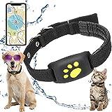 XFTOPSE GPS Tracker Hund Katzenhalsband, GPS Rückruffunktion Hundehalsband Wasserdicht USB Lade, Haustier Tractive GPS Tracker für Hunde und Katze