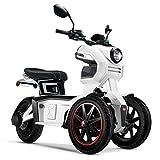 Doohan iTank eGo2 Elektroroller 1560W - 45km/h E-Scooter Elektro-Trike 2 Personen E-Roller 3-Rad Elektromobil EU-Zulassung