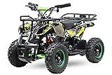 Eco Graffiti Mini Quad 1000W 48V 6 Zoll Kinderquad ATV Kinderfahrzeug (Grafity Rot)