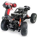 RC Cars, Ferngesteuerte Trucks im Maßstab 1:16 4WD High-Speed Off-Road Monster RC Trucks mit Akku, 30+ Min. Spielzeit, Spielzeug Geschenk für Erwachsene Kinder Jungen