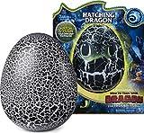 Dreamworks Dragons 6046183 Dragons Ohnezahn Babydrachen Ei, Hatching Dragon, Ohnezahn zum Ausbrüten, Soundeffekte, Kopf - und Bauchsensoren, interaktiv