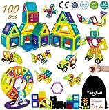 theefun Magnetische Bausteine, 100 Teile Magnetspielzeug Magnete Kinder Magnetspielzeug ab 3 Jahre Magnetspiele Kinderspielzeug Magnetic Bauklötze Ideales Spielzeug als Geschenk für Kinder
