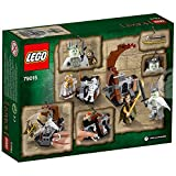 LEGO 79015 - The Hobbit Kampf mit dem Hexenkönig, Konstruktionsspielzeug