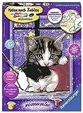 Ravensburger Malen nach Zahlen 28561 - Kuschelndes Kätzchen - Für Kinder ab 9 Jahren